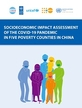 Socioeconomic impact assessment of the COVID-19 pandemic in five poverty counties in China
